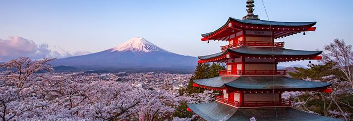 To nejlepší z Japonska + KVETOUCÍ SAKURY + TRADIČNÍ LÁZNĚ