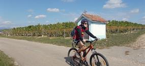 Alsasko na kole - vinná stezka