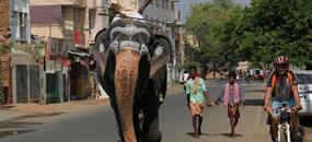 Jižní Indie na kole