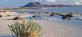 Kanáry – Lanzarote, Fuerteventura a Gran Canaria