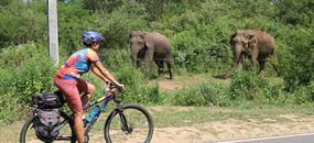 Šrí Lanka na kole