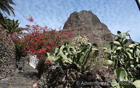 Kanárské ostrovy – Tenerife a La Palma