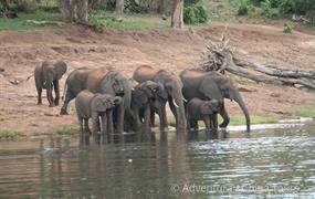 Viktoriiny vodopády a NP Chobe