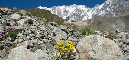 Gruzie – turistika ve Svanetii