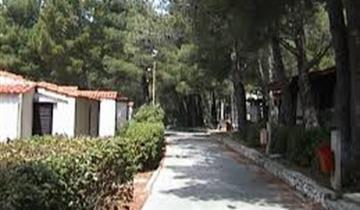 Kemp Basko Polje