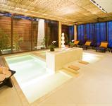 Hotel Grand Mirage Resort **
