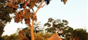 NAMIBIE, JAR A LESOTHO