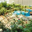 Tropical Island - jednodenní zájezd