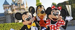 Paříž a Disneyland, poznávání a zážitky, ubytování hotel, snídaně, doprava, průvodce