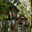 Permai Rainforest Resort ***