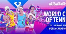 Vstupenka FED CUP 2020 Budapešť základní skupina čtvrtek