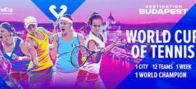 Vstupenka FED CUP 2020 Budapešť finálový víkend