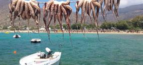 Santorini – Ios – Folegandros