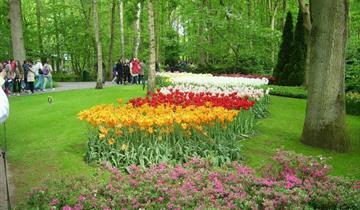 Květinové korzo - Keukenhof a Amsterdam