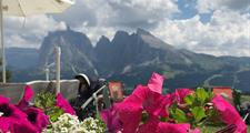 Rozkvetlé Dolomity a Lago di Garda - POBYTOVÝ S VÝLETY