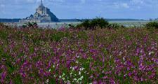 Normandie a Bretaň - království Atlantiku