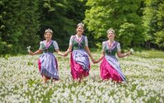Festival narcisů v Rakousku