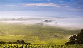 Gurmánské Burgundsko
