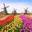 Květinový park Keukenhof, větrné mlýny a Amsterdam