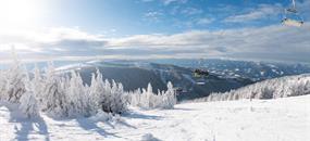 Jednodenní lyžování ve středisku Stuhleck am Semmering