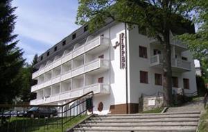 Wellness HOLIDAYS - Lázeňský léčebný dům Jan Ripper