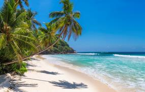 Poznávací zájezd Jamajka