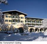 Gasthof Torrenerhof ***