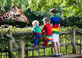 Zoo v Lipsku