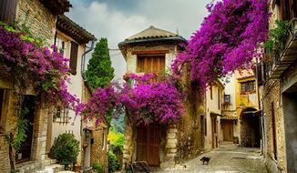 Návštěva Provence s vůní levandule