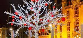 Silvestr v Bruggách