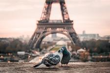 Valentýn v Paříži