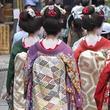 Japonsko - v zemi gejš a samurajů ***