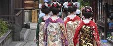 Japonsko - v zemi gejš a samurajů