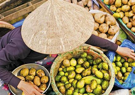 Vietnam ve slaměném klobouku
