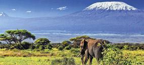 Keňa - přivítání s Afrikou