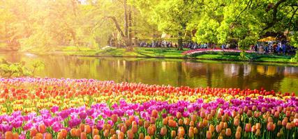 Amsterdam - úžasná lehkost bytí