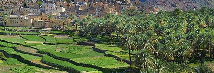 7 denní okruh Arábií