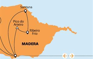 Madeira - festival věčného jara