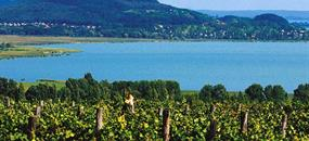 Budapešť a Tokaj - v zemi vína, čardáše a horkých pramenů (pro pohodlné)