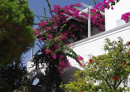 Studia Santorini Houses