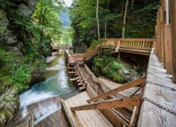 Dřevěná Vodní Stezka