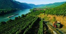 Romantické Údolí Wachau | Na Kole, Lodí, Pěšky