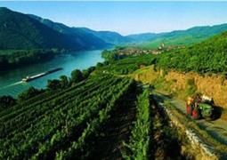 Romantické Údolí Wachau   Na Kole, Lodí, Pěšky