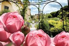 Dny Růží Na Zámku Rosenburg