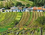Weinparade V Poysdorfu