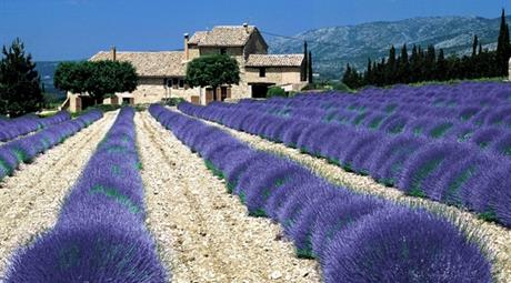 Provence a Francouzská riviéra