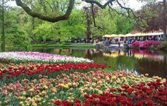 Amsterdam a květinový park Keukenhof