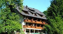 Hotel Carossa - jezero Wolfgangsee