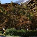 Hotel-Gasthof Zur Mühle - Kaprun