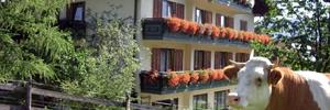 Hotel-Garni Haflingerhof ***